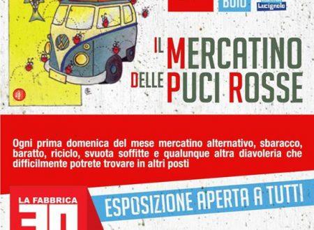 Mercatino delle Puci Rosse a Pescia, edizione di Maggio
