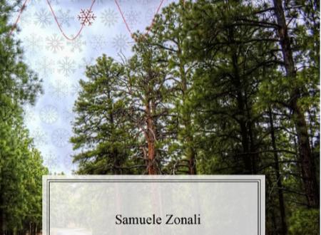 Le Intermittenze di Samuele Zonali