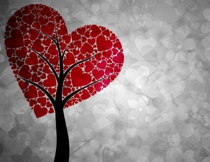 RLM #1 – All'amore non si comanda