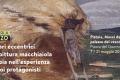 I macchiaioli a Pistoia