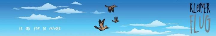 kleiner flug