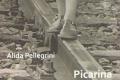Picarina